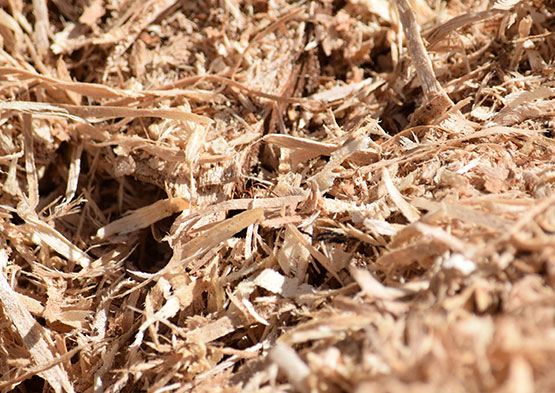 biomass-products